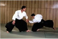 Sportschool Aikido Sakura Nijmegen