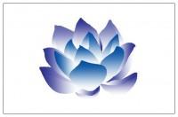 Gezocht Astrologen voor Spirituele hulp en advieslijn