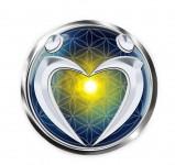 4 Daagse Awakening the Illuminated Heart Workshop