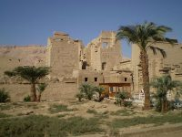 Programma met 13-dgse Reis naar je Centrum in Egypte 8 t/m 20 maart