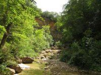 Programma met 10-dgse meditatiereis Zuid Frankrijk 3 t/m 14 juli